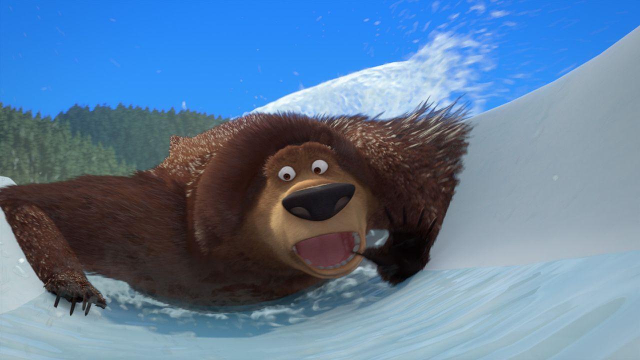 Der Grizzlie Boog stürzt sich in ein wildes Abenteuer! - Bildquelle: 2008 Sony Pictures Animation Inc. All Rights Reserved.