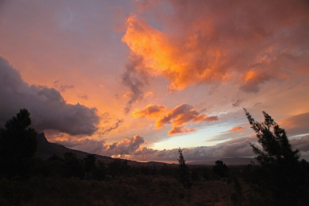 In einem wilden Land Hintergrund und Fakten18 - Bildquelle: Boris Guderjahn / SAT.1