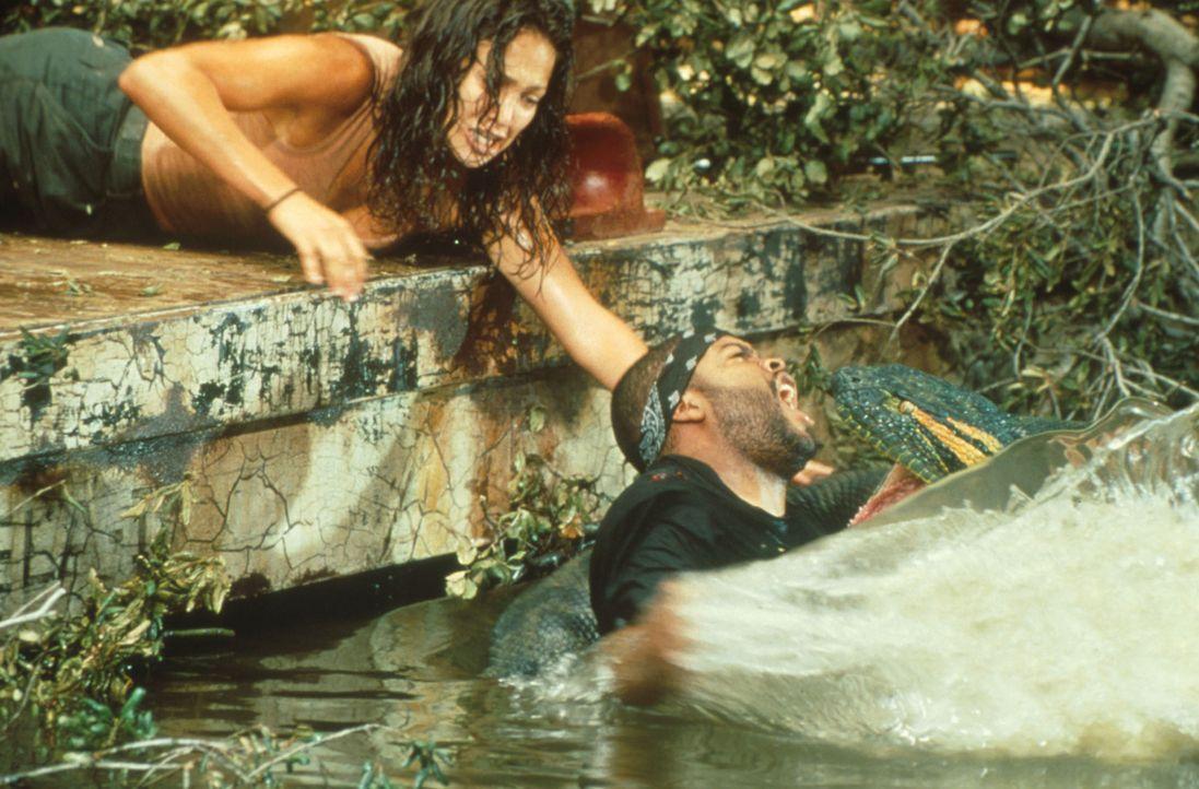 Terri (Jennifer Lopez, r.) versucht verzweifelt, Danny (Ice Cube, l.) aus dem tödlichen Griff der Würgeschlange zu befreien ... - Bildquelle: Columbia TriStar