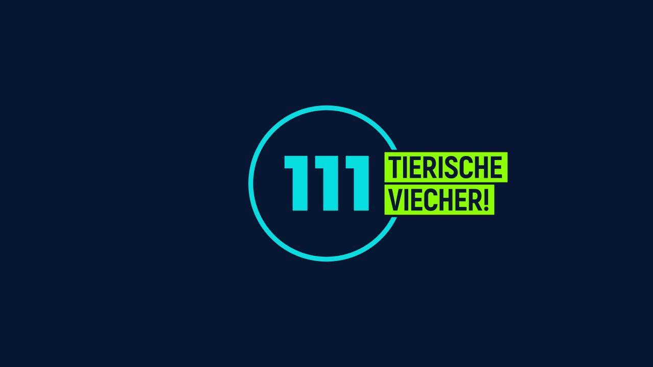 111 tierische Viecher! - Logo - Bildquelle: SAT.1