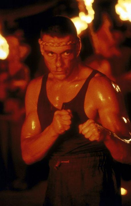 In einer mysteriösen tibetanischen Stadt kämpft Chris (Jean-Claude van Damme) um einen Drachen aus purem Gold ... - Bildquelle: Universal Pictures
