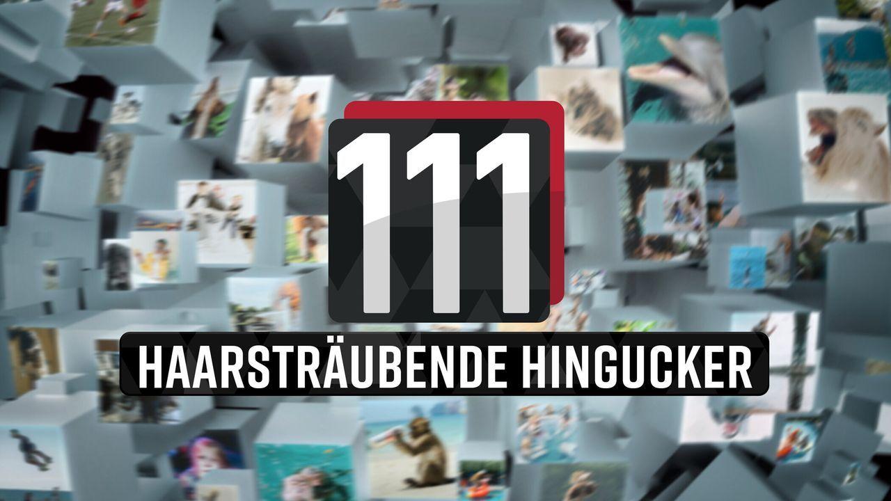 111 haarsträubende Hingucker! - Logo - Bildquelle: SAT.1