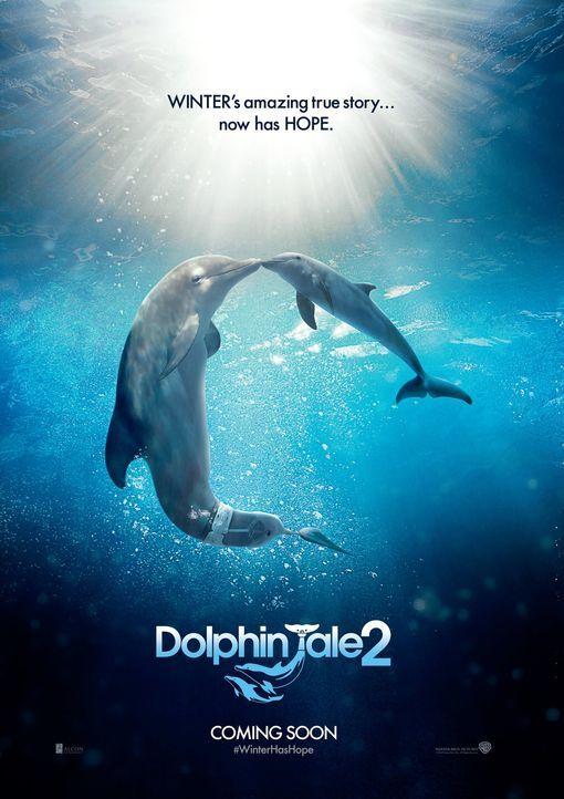 Mein Freund der Delfin 2 - Plakatmotiv - Bildquelle: Warner Brothers Entertainment Inc.