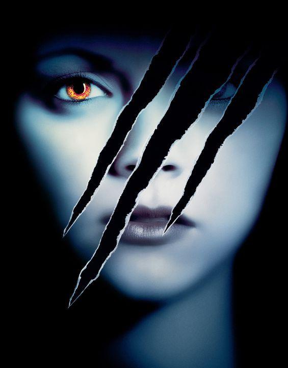 Verflucht - Artwork - Bildquelle: Dimension Films
