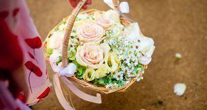 Mit einem Körbchen in der Hand ziehen Mädchen und Jungs vor dem Hochzeitspaar...