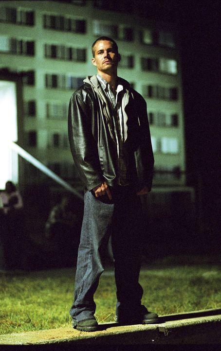 Eines Tages soll der Kleinganove Joey (Paul Walker) die Pistole des Mafiosos Thommy Perello entsorgen, der damit einen korrupten Cop erlegt hat. Dum... - Bildquelle: Licensed by E.M.S. New Media AG