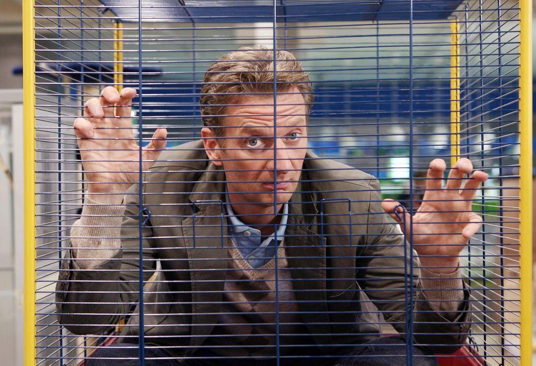 Auch in der Tierhandlung ist die Zahl seiner (Michael Kessler) möglichen Fettnäpfchen unendlich ... - Bildquelle: Sat.1