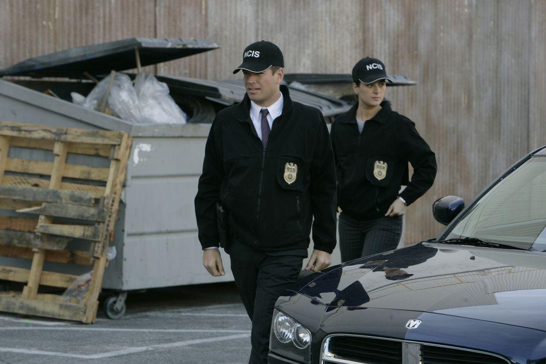 Ein früherer Mitarbeiter des Geheimdienstes der Navy wurde ermordet aufgefunden. Ziva (Cote de Pablo, r.) und DiNozzo (Michael Weatherly, l.) ermit... - Bildquelle: CBS Television