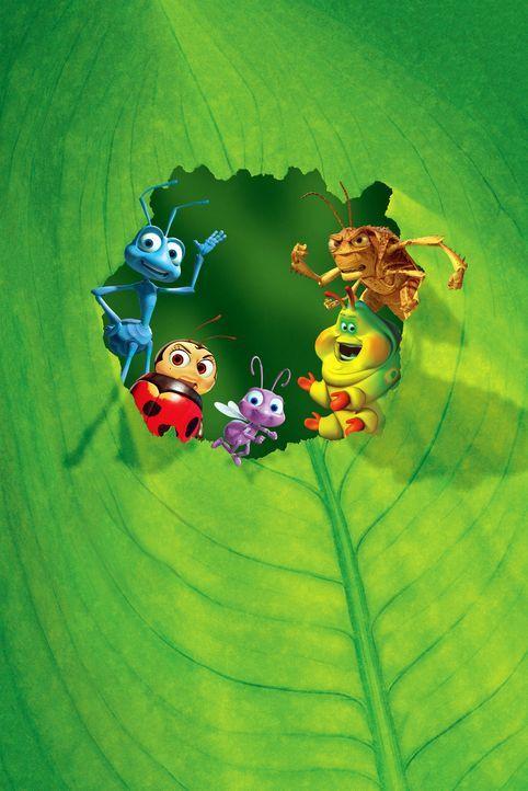 (v.l.n.r.) Flik, Franzi, Dot und Gustl hätten eigentlich ein ganz ruhiges Leben auf der Ameiseninsel - wäre da nicht der Grashüpfer Hopper und se... - Bildquelle: Disney/Pixar