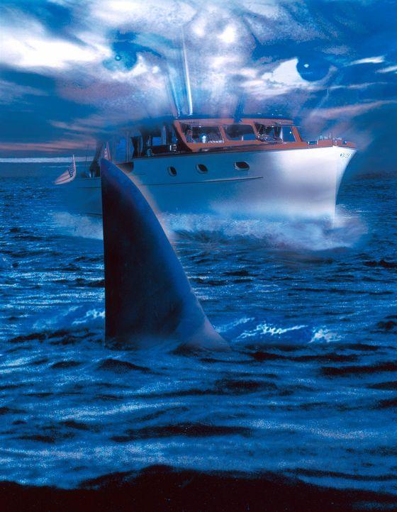 Shark Zone - Tod aus der Tiefe - Bildquelle: Nu Image