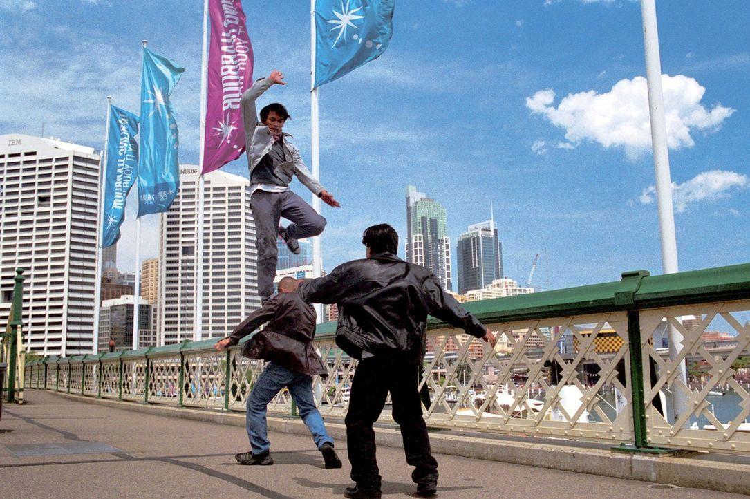 Kann Kham (Tony Jaa, oben) seine geliebten Elefanten vor einem Ende im Kochtopf retten? - Bildquelle: e-m-s the DVD-Company