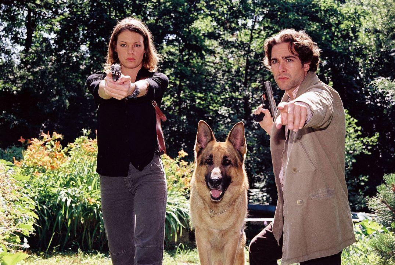 Niki (Elke Winkens, l.), Rex und Marc (Alexander Pschill, r.) pirschen sich an ... - Bildquelle: Sat.1