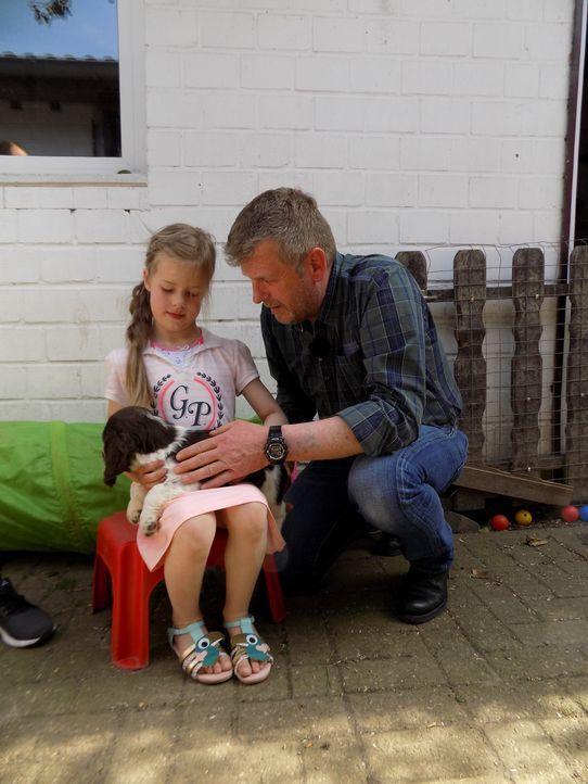 Familie Zieglerski möchte einen Hund. Doch welcher Hund passt zu ihnen? Hundetrainer Dirk Lenzen (r.) hilft bei der Auswahl ... - Bildquelle: SAT.1