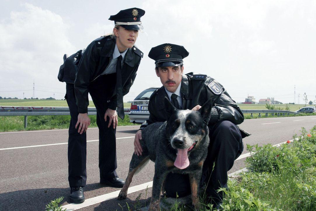 Das ist eindeutig ein Fall für Wasso, den Polizeihund. Wer sonst sollte die Radarfalle finden, schließlich haben die beiden Polizisten (Judith Ric... - Bildquelle: Noreen Flynn Sat.1