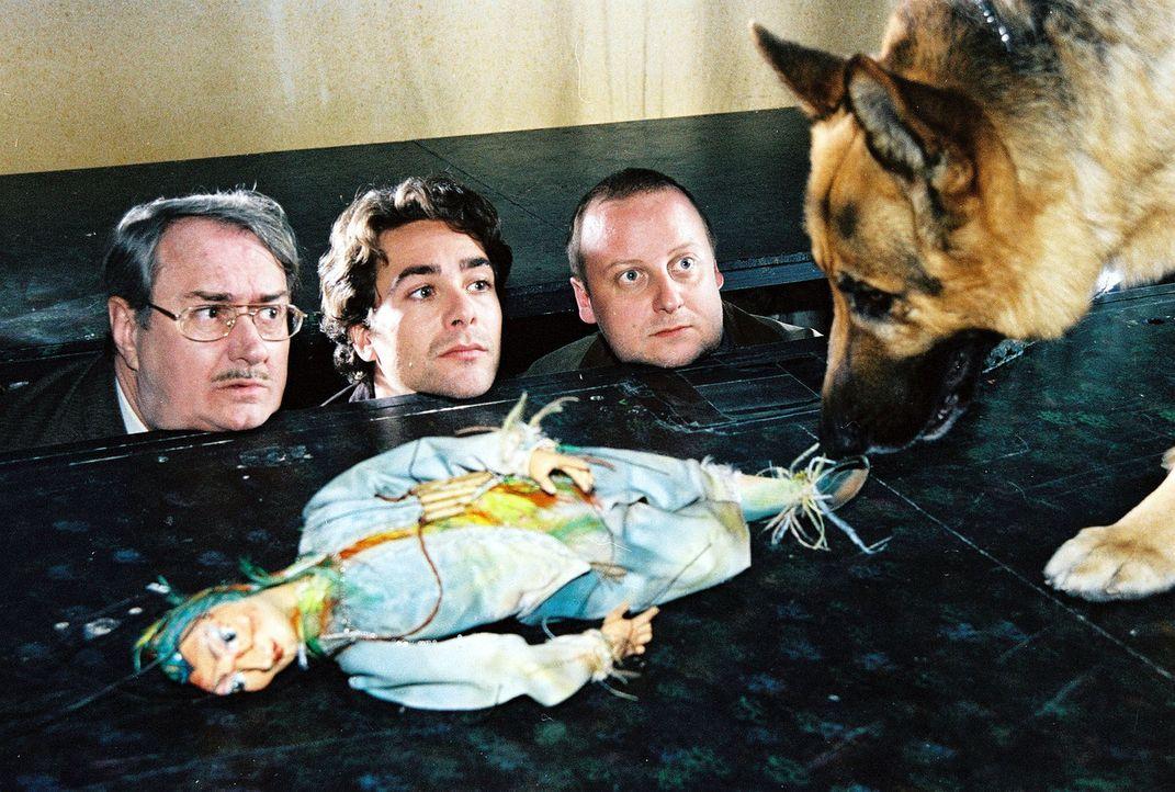 Im Marionettentheater des Schlosses Schönbrunn wird während der Vorstellung der Marionettenspieler ermordet. Es gibt keinerlei schlüssige Hinweis... - Bildquelle: Sat.1