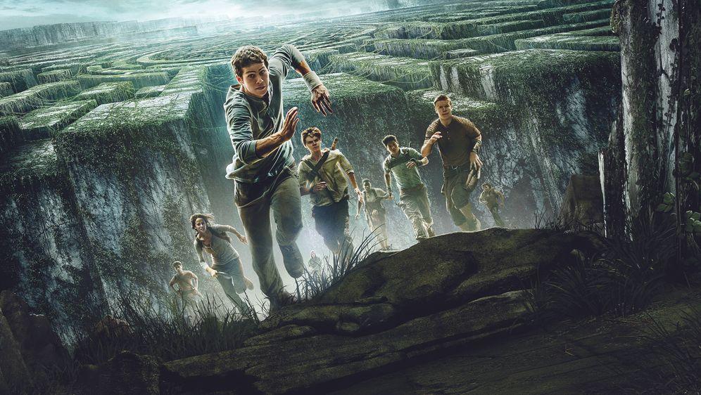 Maze Runner - Die Auserwählten im Labyrinth - Bildquelle: 2014 Twentieth Century Fox Film Corporation. All rights reserved.
