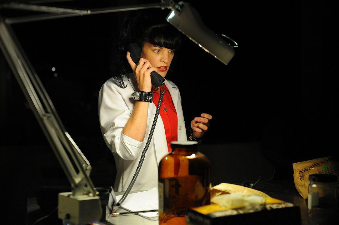 Bei einem neuen Mordfall wird Abby (Pauley Perrette), das Laborgenie aus NCIS, eingeschaltet ... - Bildquelle: CBS Studios Inc. All Rights Reserved.