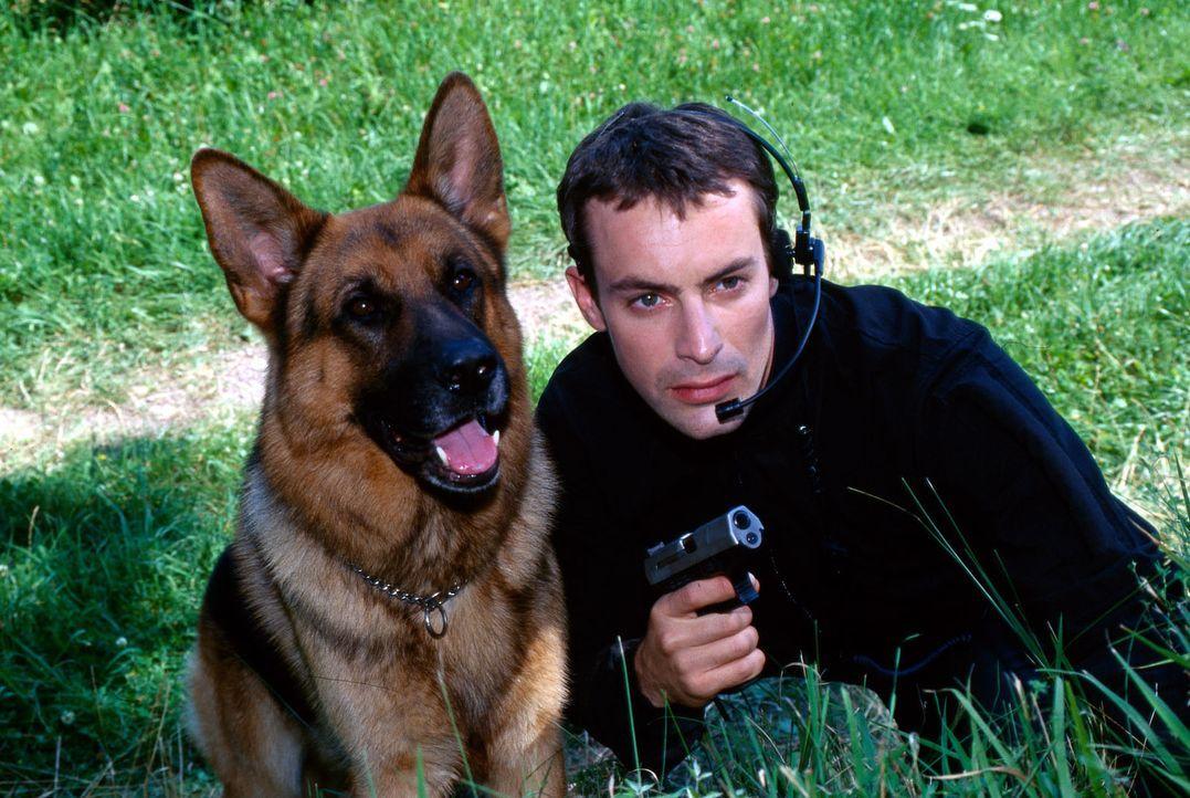 """Der eine hat sein Herrchen verloren, der andere seinen Hund. Doch schon nach kurzer Zeit kommen Rex und sein neuer """"Vorgesetzter"""" Alexander Brandtne... - Bildquelle: Ali Schafler Sat.1"""