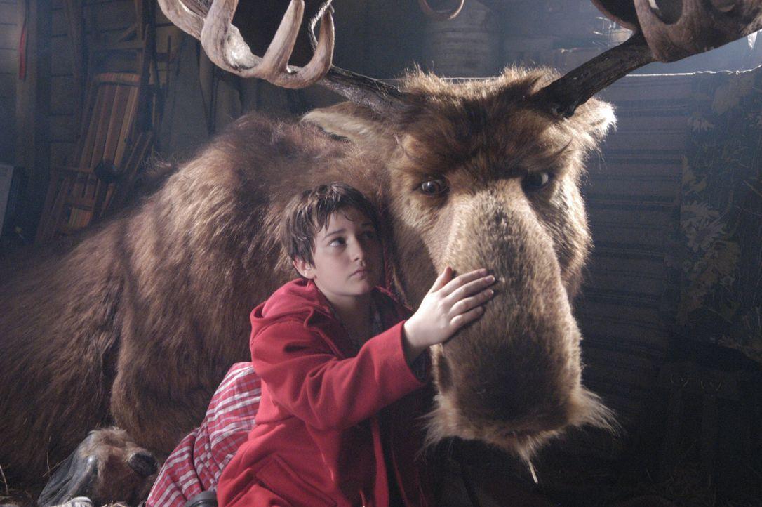 Mr. Moose (r.) und Bertil (Raban Bieling, l.) werden beste Freunde, doch der Weihnachtsmann ist bereits auf dem Weg, seinen Elch abzuholen ... - Bildquelle: Buena Vista International Television
