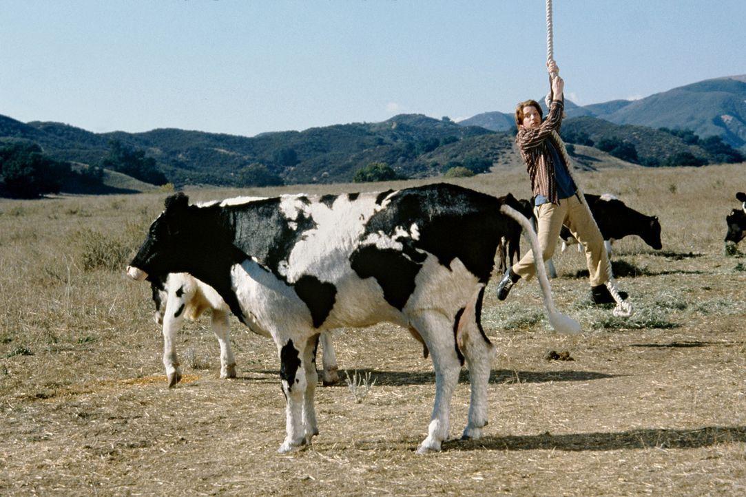 Auch für Duane (Seth Green) verläuft das Rennen nicht ohne unliebsame Überraschungen ... - Bildquelle: Senator Film