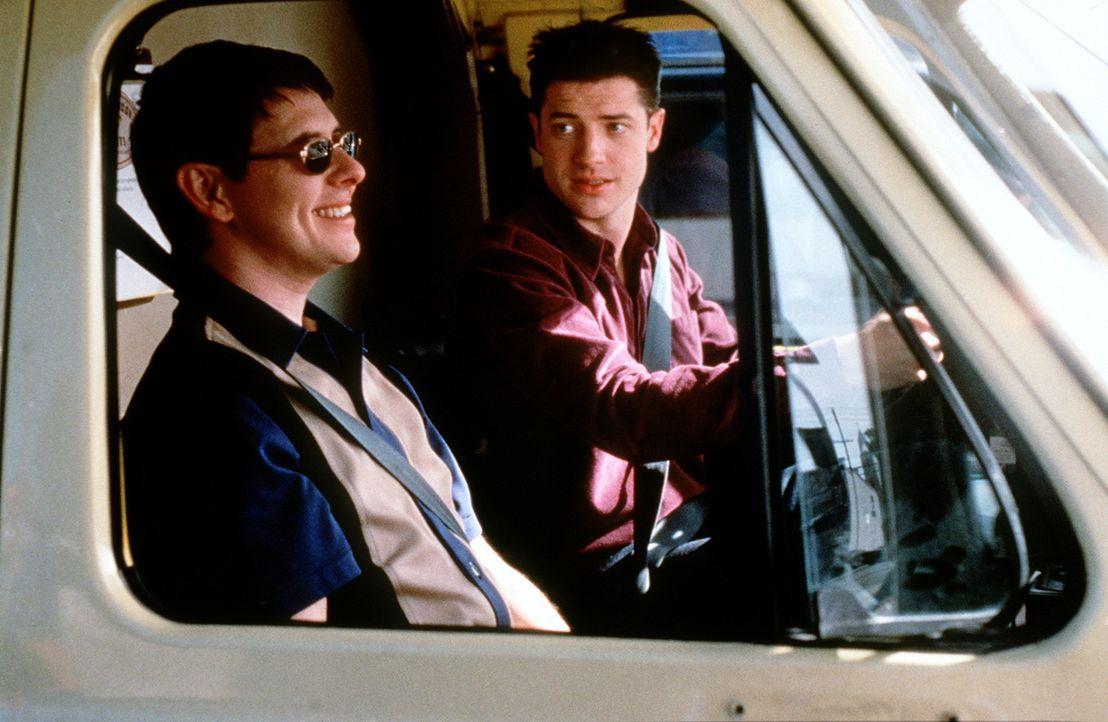 Im Großstadt-Dschungel der wilden 90er ist der behütete Adam (Brendan Fraser, r.) restlos überfordert. Troy (Dave Foley, l.) nimmt sich seiner an... - Bildquelle: New Line Cinema