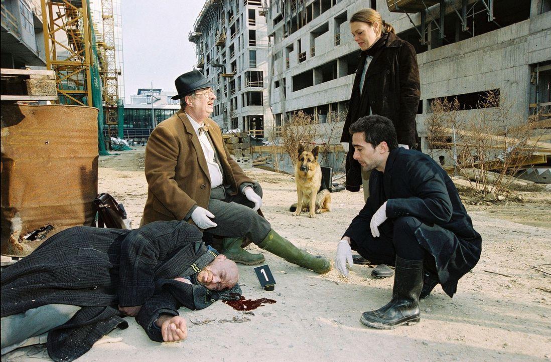 Dr. Leo Graf (Gerhard Zemann, 2.v.l.) untersucht die Leiche, die auf einer Baustelle gefunden wurde. Mit Marc (Alexander Pschill, r.) und Niki (Elke... - Bildquelle: Sat.1