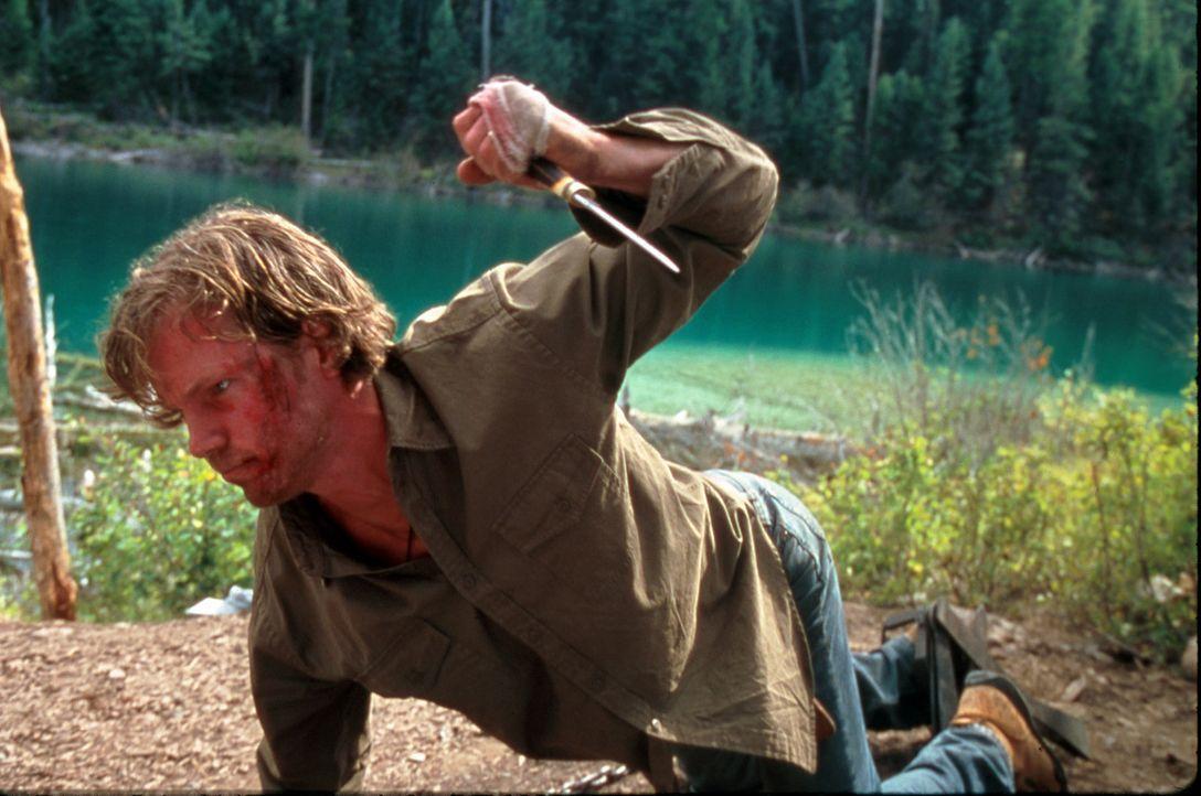 Schon bald entpuppt sich Mitch (Kip Pardue) als gemeingefährlicher Psychopath ... - Bildquelle: Splendid Pictures