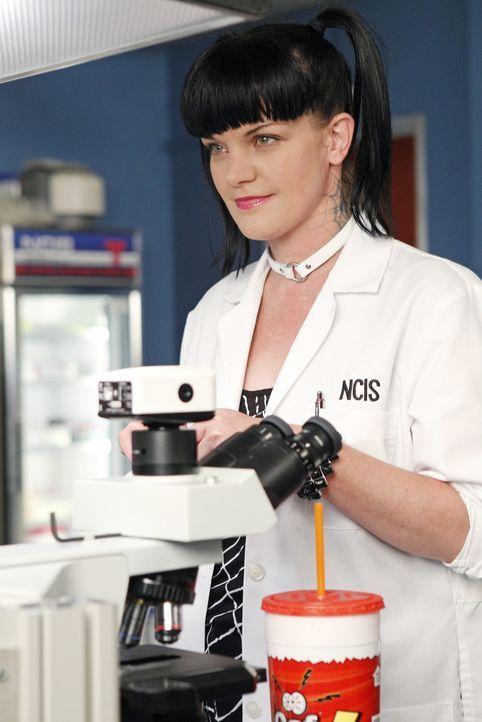 Kann Abby (Pauley Perrette) Licht ins Dunkle in einem neuen Fall bringen? - Bildquelle: CBS Television