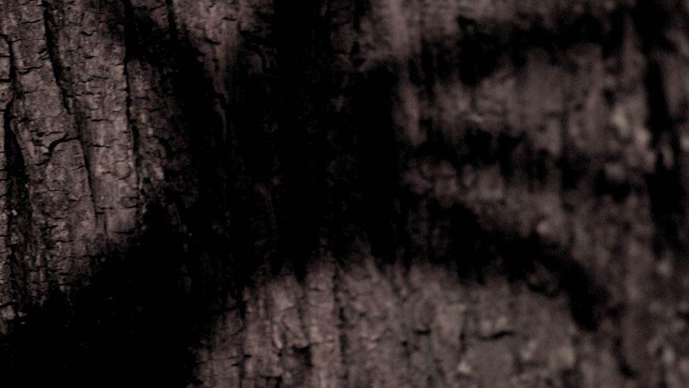Wer hat Angst vorm schwarzen Mann? - Bildquelle: Stefan Haring ProSieben