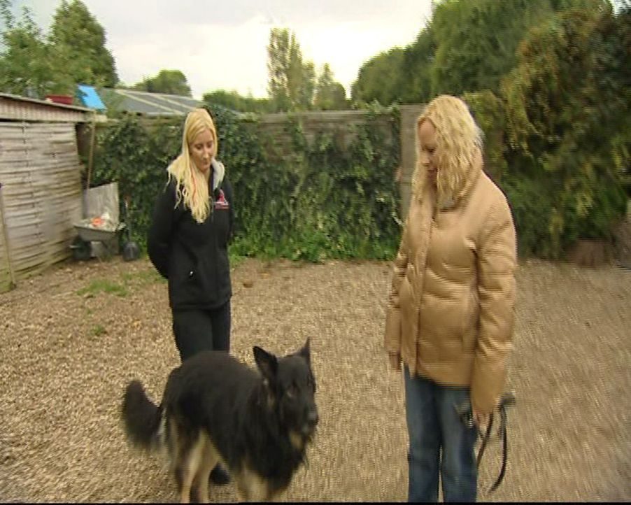 Familie Kosanke (r.) hat Probleme mit ihrem Hund. Da kann nur eine helfen: Hundetherapeutin Stefanie (l.) ... - Bildquelle: SAT.1 Gold