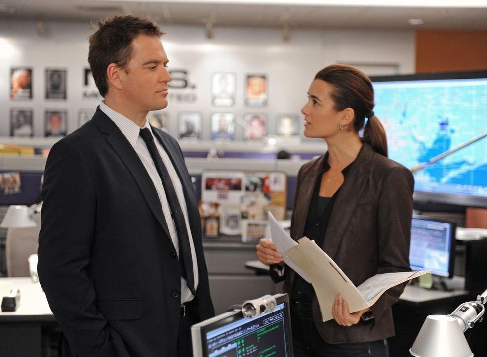 Müssen einen neuen Mordfall aufdecken: Tony (Michael Weatherly, l.) und Ziva (Cote de Pablo, r.) ... - Bildquelle: CBS Television