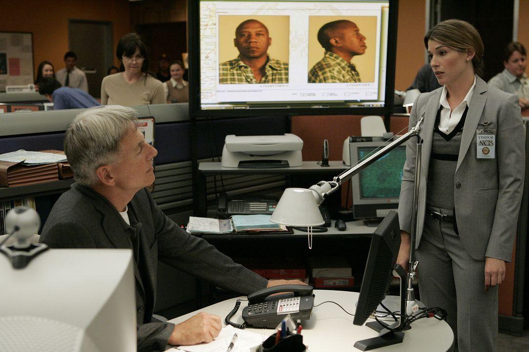 Werden sie den neuen Fall lösen können?: Gibbs (Mark Harmon, l.) und Special Agent Courtney Krieger (Dorian Brown, r.) ... - Bildquelle: CBS Television