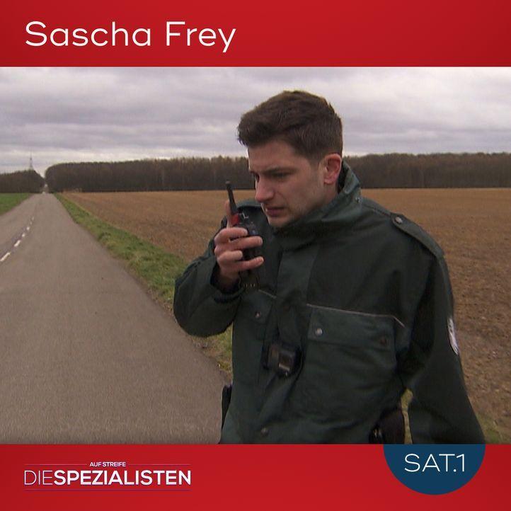 Sascha Frey - Bildquelle: SAT.1
