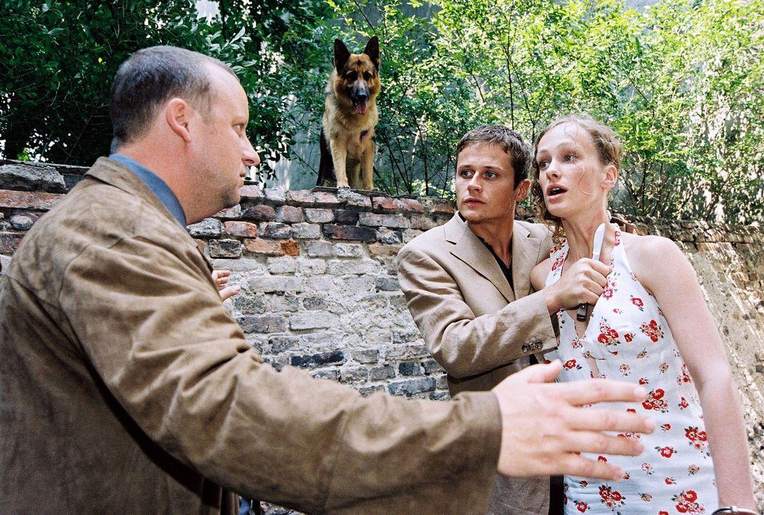Fritz Kunz (Martin Weinek, l.) redet beschwichtigend auf Huneck (Roman Knizka, M.) ein, der Helga Brunner (Marie Christine Friedrich, r.) mit einem... - Bildquelle: Sat.1