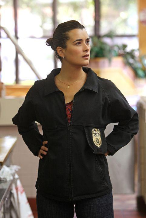 Gemeinsam mit ihren Kollegen versucht Ziva (Cote de Pablo) einen neuen Fall zu lösen ... - Bildquelle: CBS Television