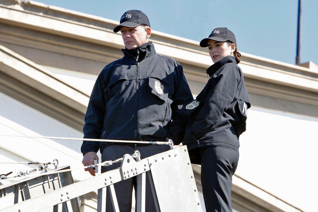 Um einem Mord aufzuklären, geben Gibbs (Mark Harmon, l.) und Ziva (Cote de Pablo, r.) alles ... - Bildquelle: Cliff Lipson CBS Television
