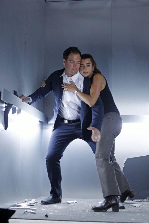 Ahnen noch nicht, was gerade mit ihnen passiert: Ziva (Cote de Pablo, r.) und Tony (Michael Weatherly, l.) ... - Bildquelle: CBS Television