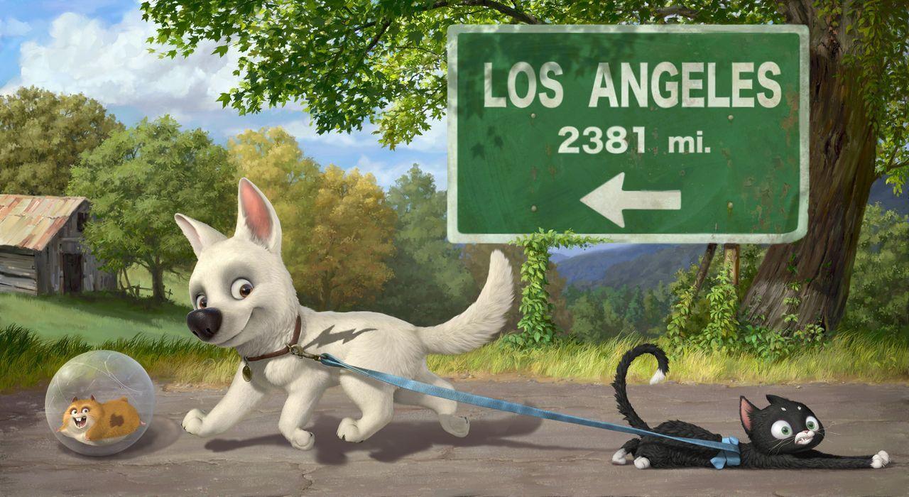 Mittens (M.) und Bolt (l.) treffen auf Dino (r.), einen fernsehbesessenen Hamster, der sein Leben in einem Joggingball verbringt und Bolts Serie ver... - Bildquelle: Disney Enterprises, Inc.  All rights reserved