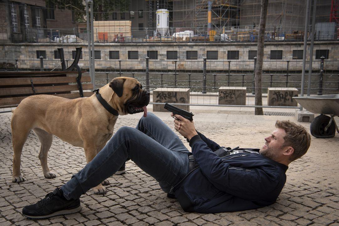 (v.l.n.r.) Rocky; Elias Decker (Jens Atzorn) - Bildquelle: Christoph Assmann SAT.1/Christoph Assmann