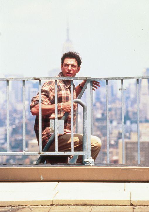 Während die Menschenheit die Ankunft der Außerirdischen feiert, entschlüsselt David (Jeff Goldblum) den Funkcode der Raumschiffe: die Koordinatio... - Bildquelle: 20th Century Fox Film Corporation