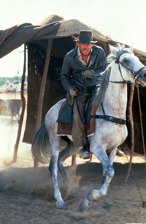 Indy (Harrison Ford) findet immer einen Ausweg ... - Bildquelle: Paramount Pictures International