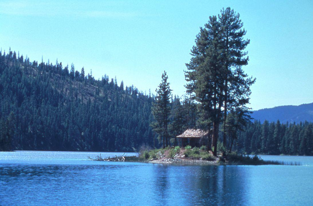 Das frisch verheiratete Paar Julianne und Mitch verbringt seine Flitterwochen in einer rustikaler Blockhütte auf einer Insel inmitten eines Bergsee... - Bildquelle: Splendid Pictures