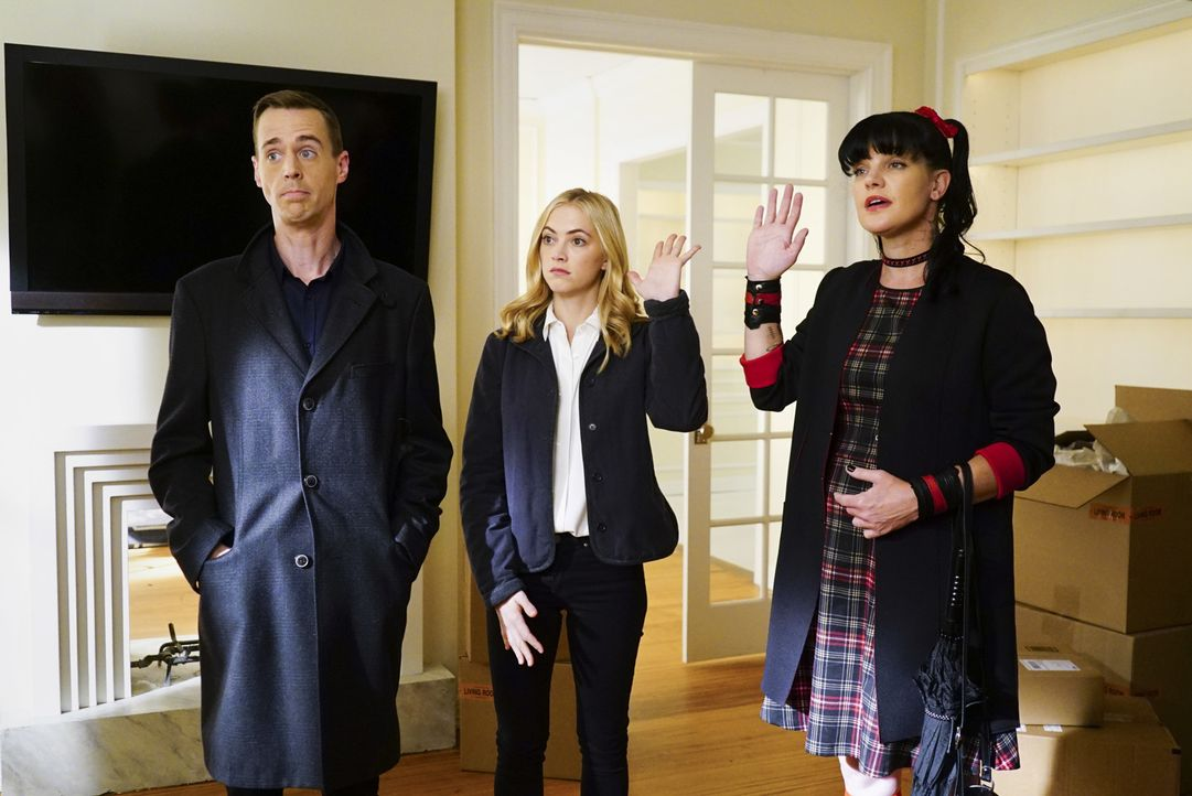Abby (Pauley Perrette, r.), Bishop (Emily Wickersham, M.) und McGee (Sean Murray, l.) umschmeicheln Tony DiNozzo Sr. denn alle wollen sein Apartment... - Bildquelle: Sonja Flemming 2016 CBS Broadcasting, Inc. All Rights Reserved