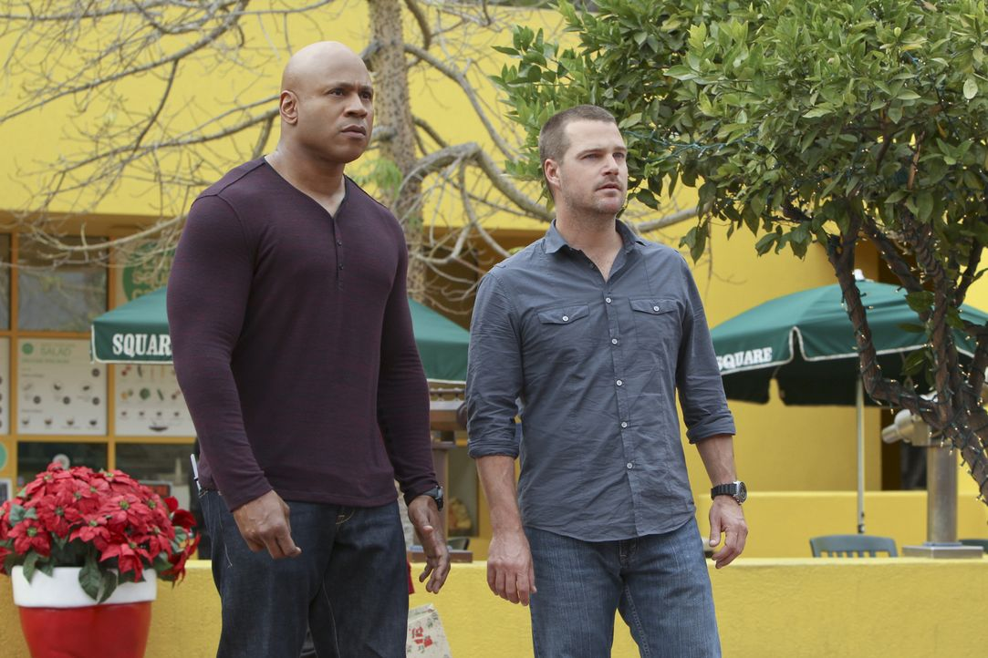 Ein neuer Fall beschäftigt Callen (Chris O'Donnell, r.) und Sam (LL Cool J, l.) ... - Bildquelle: CBS Studios Inc. All Rights Reserved.