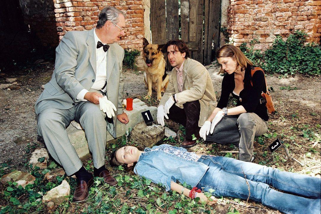 Dr. Graf (Gerhard Zemann, l.), Marc (Alexander Pschill, 2.v.r.) und Niki (Elke Winkens, r.) rätseln, warum das junge Mädchen Selbstmord begangen h... - Bildquelle: Sat.1
