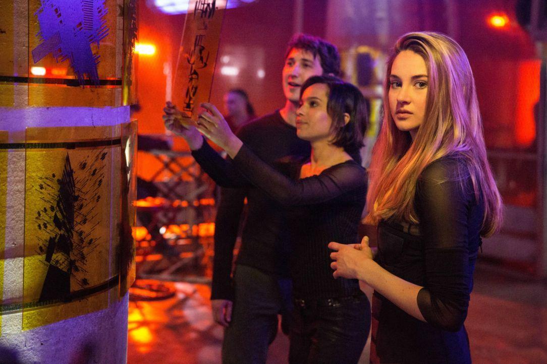 Tris (Shailene Woodley, r.), Christina (Zoë Kravitz, M.) und Peter (Miles Teller, l.) sind Rekruten der Fraktion der furchtlosen Ferox und müssen za... - Bildquelle: 2014 Concorde Filmverleih GmbH