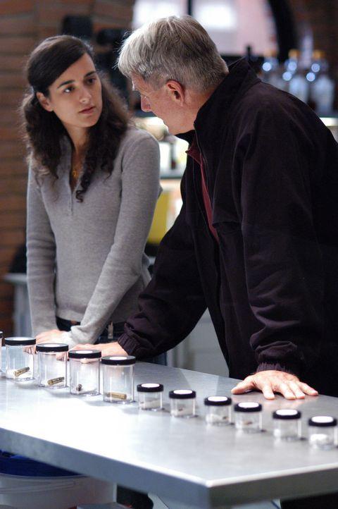 Ziva (Cote de Pablo, l.), ist für Gibbs (Mark Harmon, r.) und seine Leute undurchsichtig und rätselhaft ... - Bildquelle: TM &   2006 CBS Studios Inc. All Rights Reserved.