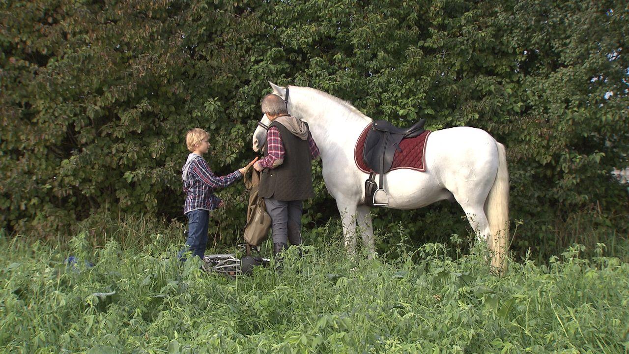 Der-Pferdeflüsterer28 - Bildquelle: SAT.1