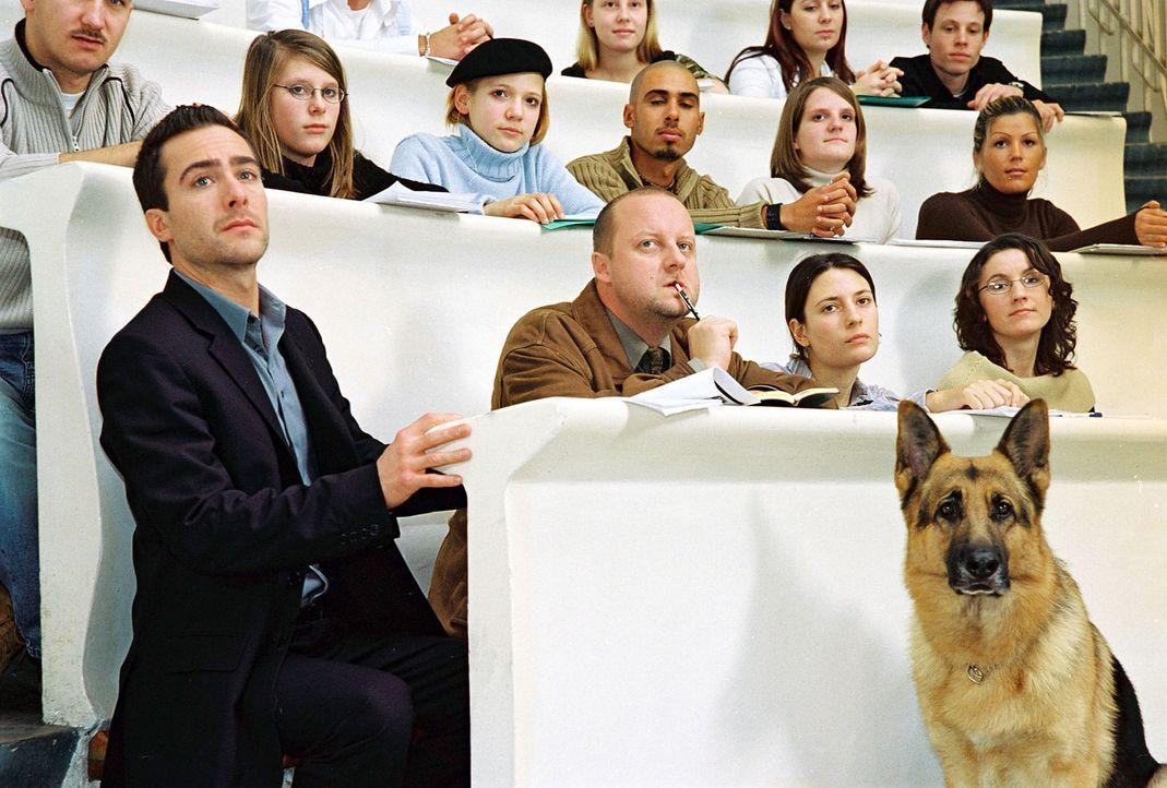 Marc (Alexander Pschill, l.), Kunz (Martin Weinek, 2.v.l.) und Rex sind in der Universität und hören sich dort einen Vortrag von Dr. Graf an. - Bildquelle: Sat.1