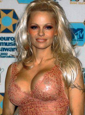 Bildergalerie Pamela Anderson | Frühstücksfernsehen - Bildquelle: dpa